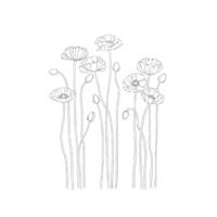 Pleasant poppies